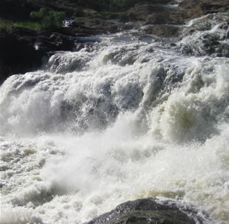 murchison-falls Tour