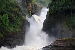 Murchison falls experience