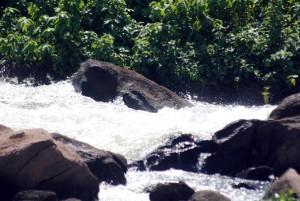 wild water lodge